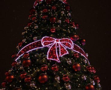 Новокузнечанам рассказали, куда можно сдать новогоднюю елку
