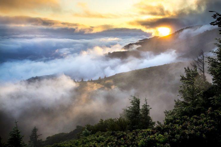 Новокузнечан предупреждают об утренних туманах