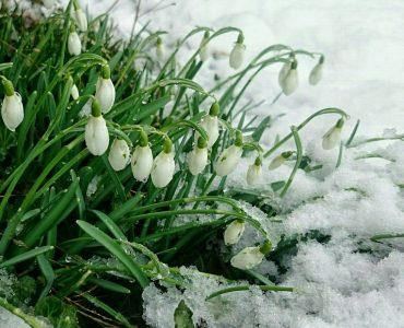 Грозы и мокрый снег вновь накроют Кузбасс